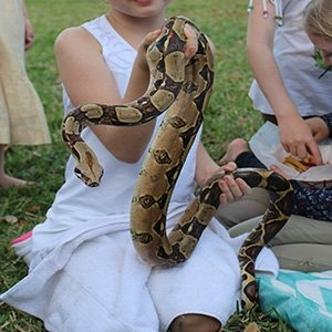 photo-picture-image-exotic-petting-animal-rental-farm-hire-party-2