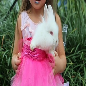 photo-picture-image-exotic-petting-animal-rental-farm-hire-party-4