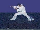 photo-picture-image-Elvis-Presley-celebrity-look-alike-lookalike-impersonator-105g