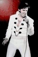 photo-picture-image-Elvis-Presley-celebrity-look-alike-lookalike-impersonator-101a