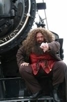 photo-picture-image-Hagrid-celebrity-look-alike-lookalike-impersonator-a