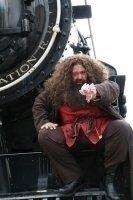 photo-picture-image-Hagrid-celebrity-look-alike-lookalike-impersonator-a