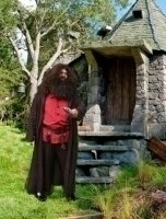 photo-picture-image-Hagrid-celebrity-look-alike-lookalike-impersonator-c