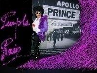 photo-picture-image-Prince-celebrity-look-alike-lookalike-impersonator-33o