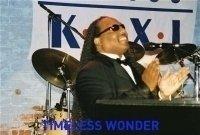 photo-picture-image-Stevie-Wonder-celebrity-look-alike-lookalike-impersonator-291e