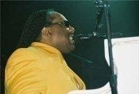 photo-picture-image-Stevie-Wonder-celebrity-look-alike-lookalike-impersonator-291g