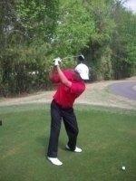 photo-picture-image-Tiger-Woods-celebrity-look-alike-lookalike-impersonator-051b