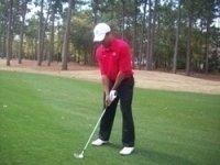photo-picture-image-Tiger-Woods-celebrity-look-alike-lookalike-impersonator-051j