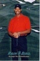 photo-picture-image-Tiger-Woods-celebrity-look-alike-lookalike-impersonator-052k