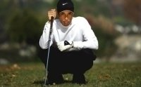 photo-picture-image-Tiger-Woods-celebrity-look-alike-lookalike-impersonator-053b