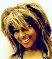 photo-picture-image-Tina-Turner-celebrity-look-alike-lookalike-impersonator-062b