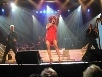 photo-picture-image-Tina-Turner-celebrity-look-alike-lookalike-impersonator-291a