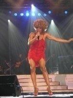 photo-picture-image-Tina-Turner-celebrity-look-alike-lookalike-impersonator-291b