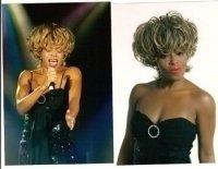 photo-picture-image-Tina-Turner-celebrity-look-alike-lookalike-impersonator-291c