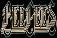 photo-picture-image-beegees-tribute-band-27