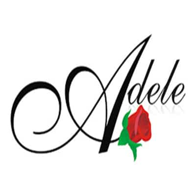 photo-picture-image-Adele-tribute-artist