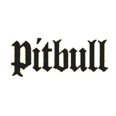photo-picture-image-pitbull-celebrity-look-alike-lookalike-impersonator-tribute-artist