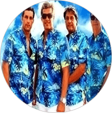 photo-picture-image-beach-boys-tribute-band-cover-band