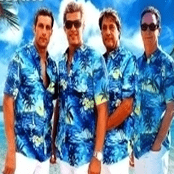 photo-picture-image-beach boys-tribute band-